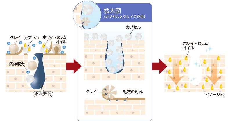 カプセルとクレイの作用図
